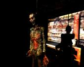 S.T.A.L.K.E.R.: Shadow of Chernobyl - Упавшая звезда. Честь наёмника + SLX Addon (2016) PC   RePack by SeregA-Lus
